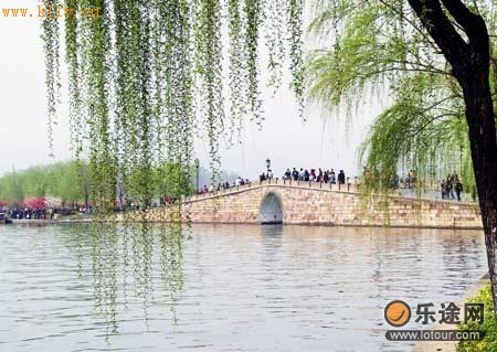 壁纸 垂柳 风景 柳树 摄影 树 桌面 450_319