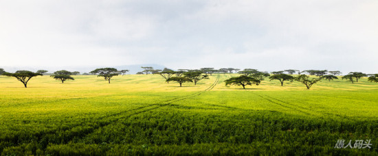肯尼亚风光-自然风景