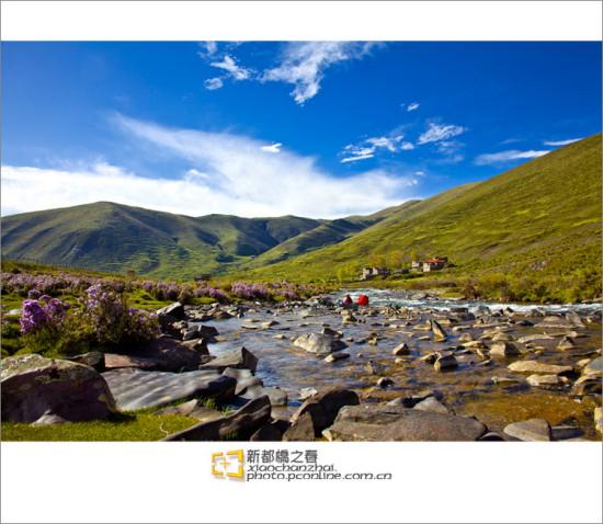 快乐旅行网 风景图片 自然风景图片 自然风景图片 >> 正文  新都桥之