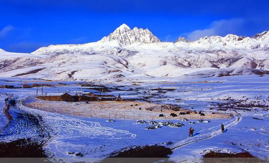 快乐旅行网 风景图片 自然风景图片 自然风景图片 >> 正文  雪域牧歌