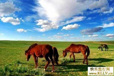 内蒙古大草原(资料图片)
